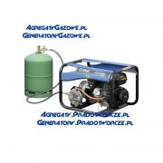 agregat-pradotworczy-sdmo-perform-3000-gaz-4.jpg